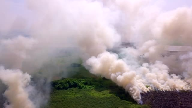 vidéos et rushes de 4k, fumée vue aérienne d'une traînée de poudre - desastre natural
