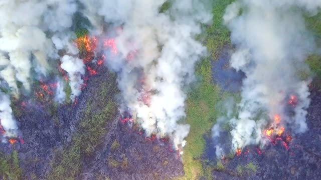 4k, aerial view smoke of wildfire - smog video stock e b–roll