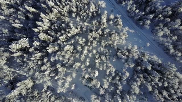 flygfoto snöiga bergen - klippiga bergen bildbanksvideor och videomaterial från bakom kulisserna