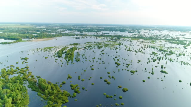 Aerial View. Spilling of the Pripyat River. Flying Over The River.