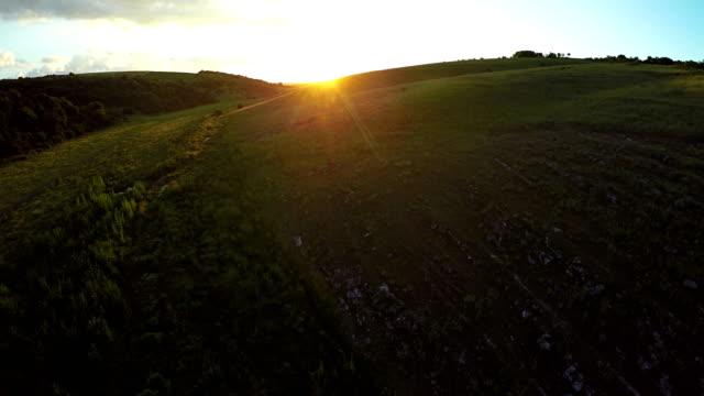 공중 보기, 푸른 잔디 언덕 위에 일몰 비행. - 언덕 스톡 비디오 및 b-롤 화면