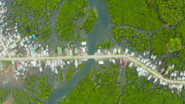 Aerial view The town is in mangroves. Siargao,Philippines The village and the highway among the mangroves from above. Siargao island, Philippines. coastal feature stock videos & royalty-free footage