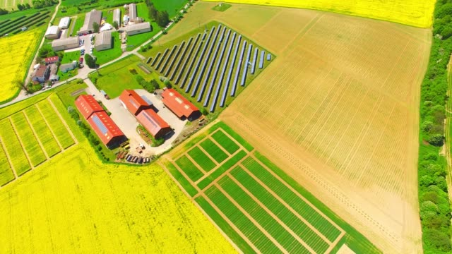 aerial view to landscape with modern farm for organic produce. green wheat and rapeseed fields from above. sustainable development and renewable energy theme. - биомасса возобновляемая энергия стоковые видео и кадры b-roll