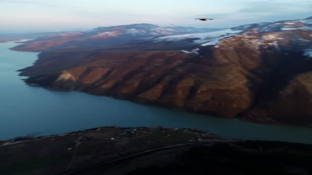 aerial view, tracking shot of a flying vulture, flying with birds of pray along beautiful landscape of fjords, mountain hills rising up from the water surface, seascape, beauty in nature, travel destinations, adventure, travel, exploration, sun - fiordo video stock e b–roll