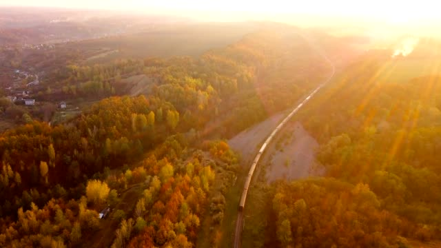 aerial view: train among tree band at the rural scene in autumn. - поезд стоковые видео и кадры b-roll