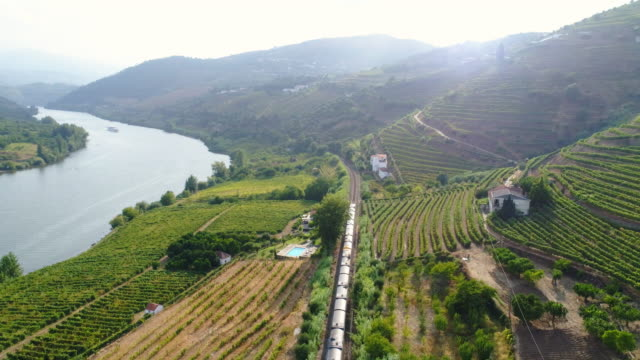stockvideo's en b-roll-footage met lucht zicht trein in douro vallei - portugal
