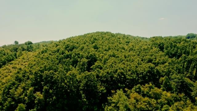 ws aerial view tranquil,idyllic rolling autumn landscape stock video - paesaggio collinare video stock e b–roll
