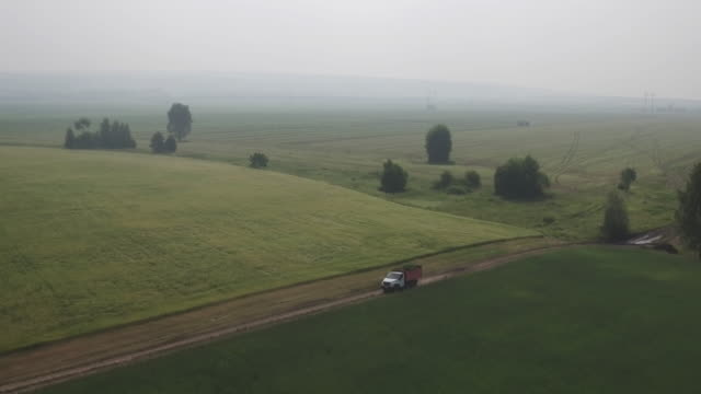 Aerial view truck carries freshly cut feed crop to farm on country road across field. Farmers will use plants for animal feed, preparing feed for winter. Modern Technologies in Agriculture video
