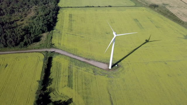 Video Aerial view Wind Farm Alternative Energy