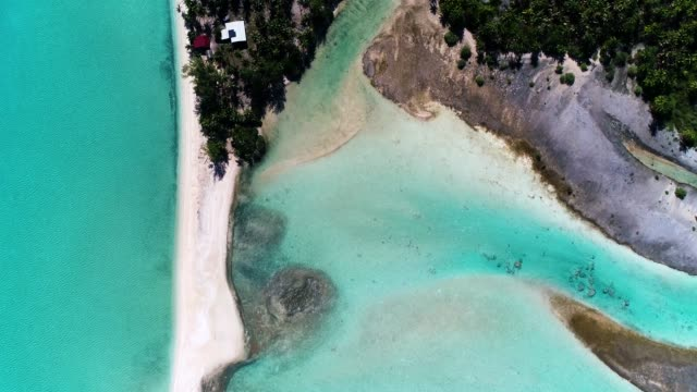 Aerial view with a drone over an island's peninsula in French Polynesia. The lagoon with turquoise water is in the Pacific Ocean with golden beach. Paradise for relaxing holidays under the sun. An atoll in the Pacific Ocean. Travel tropical concept Aerial view over the peninsula of Fakarava Island in French Polynesia. The wonderful island is in the Pacific Ocean, perfect for tourism and holidays. We can see the waves come and go on the beach. The island is an atoll only covered with beach and trees, near a turquoise lagoon.  This is a world heritage site of Unesco under the Man and the Biosphere Programme (MAP). oceania stock videos & royalty-free footage