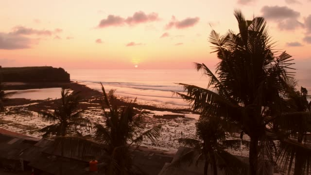 Aerial view with ocean and palms at warm sunset or sunrise