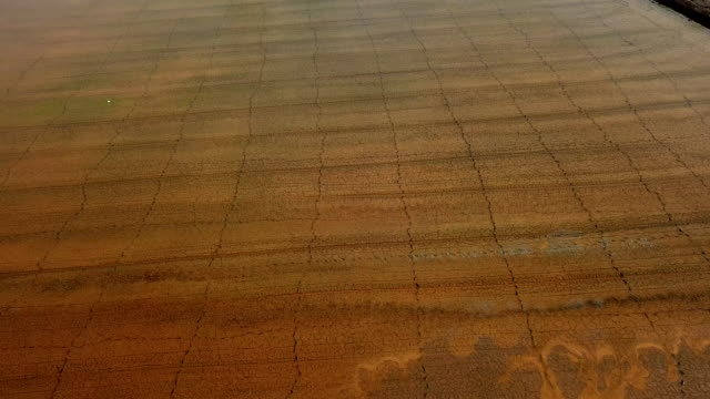 Aerial view with the soil or land deterioration for agriculture industry