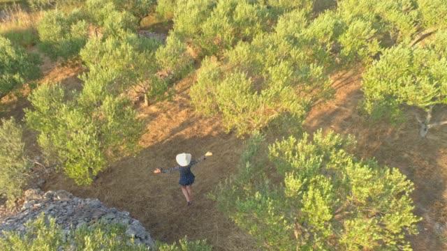 stockvideo's en b-roll-footage met ms aerial view vrouw in zon hoed wandelen onder zonnige olijfbomen - mid volwassen vrouw