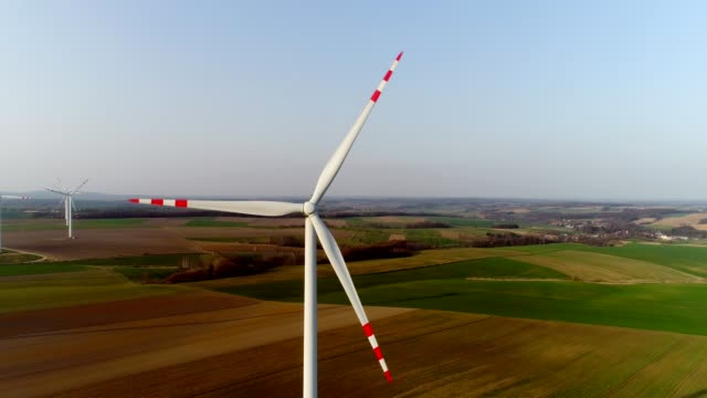 aerial wiev of windmills farm. power energy production - lama oggetto creato dall'uomo video stock e b–roll