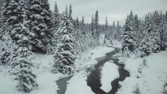 aerial | winter-wunderland - schneeflocke sonnenaufgang stock-videos und b-roll-filmmaterial