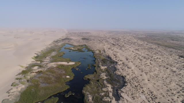 4K aerial zoom out view of an oasis spring in the Namib desert, Skeleton Coast,Namibia 4K aerial zoom out view of an oasis spring in the Namib desert, Skeleton Coast,Namibia desert oasis stock videos & royalty-free footage