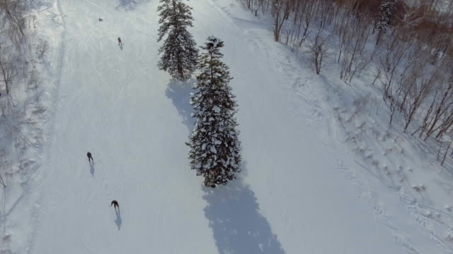 Aerial:Skiing on the mountain ridge
