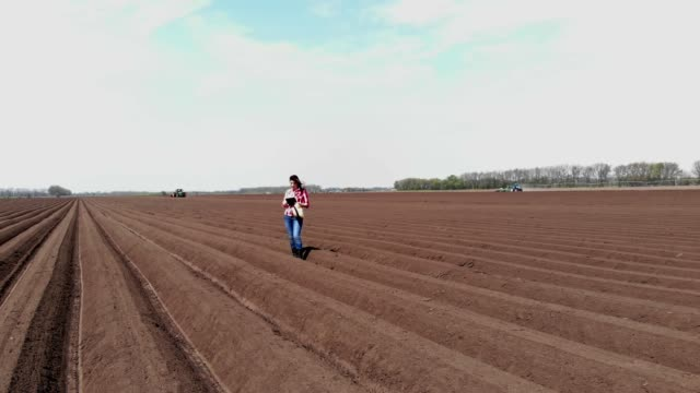 aero. Female farmer, agronomist is on field with special soil rows. She tests, using tablet, quality of automated potatoe planting by tractors. Modern agriculture, farming. spring sunny day video