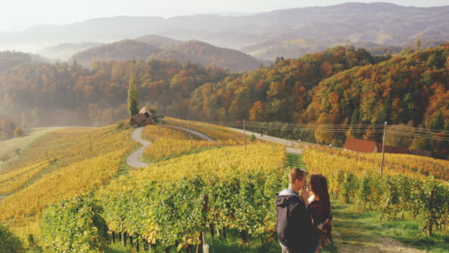 DS Affectionate couple kissing on a hill above vineyards