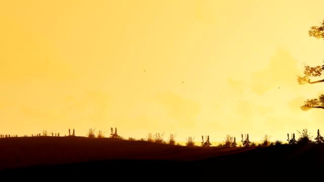 afrikanische baobab und vögel fliegen gegen schönen morgen sonne, schwenken - affenbrotbaum stock-videos und b-roll-filmmaterial