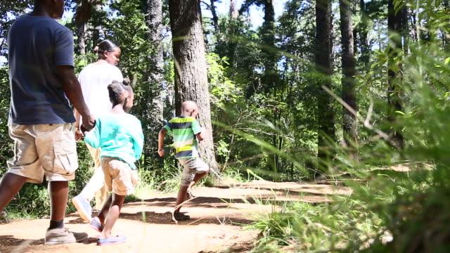 african family walking in the nature - på tå bildbanksvideor och videomaterial från bakom kulisserna