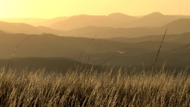 African grass savannah and mountain layers sunset video