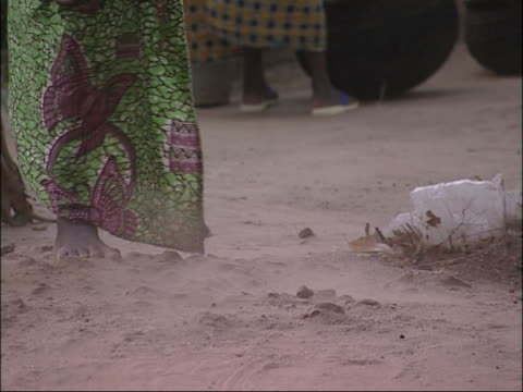 African livelihood. video