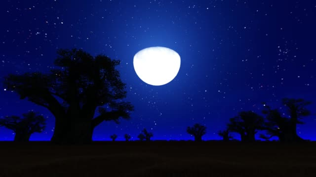 African Savanna at night with the moon