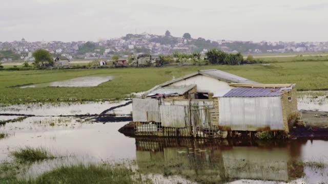 African slums. Wetland video
