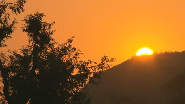 African Sun. video
