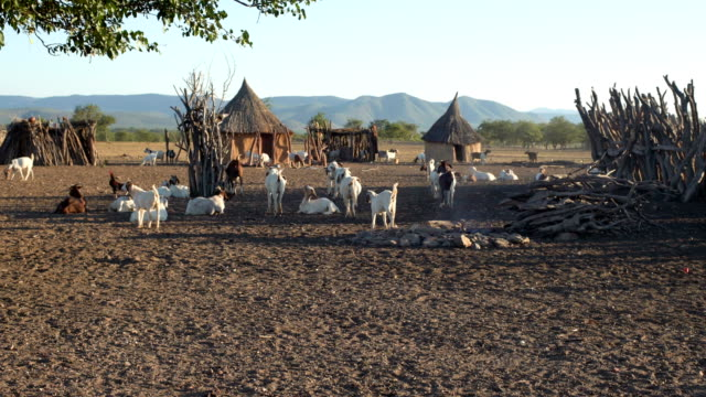 African village of Himba tribe video
