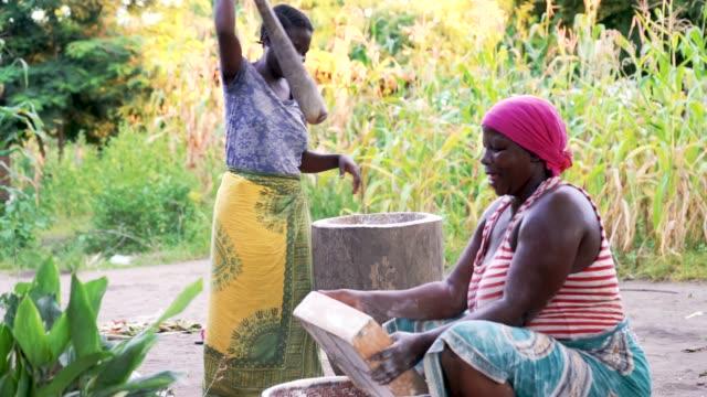アフリカの女性は、仕事では、木のポッドでキャッサバ粉をふるいにかけます ビデオ