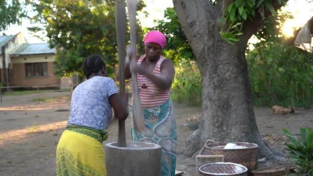 アフリカの女性が職場で、木製のポッドでキャッサバ粉をマッシュアップ ビデオ