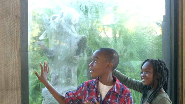 African-American children at the zoo
