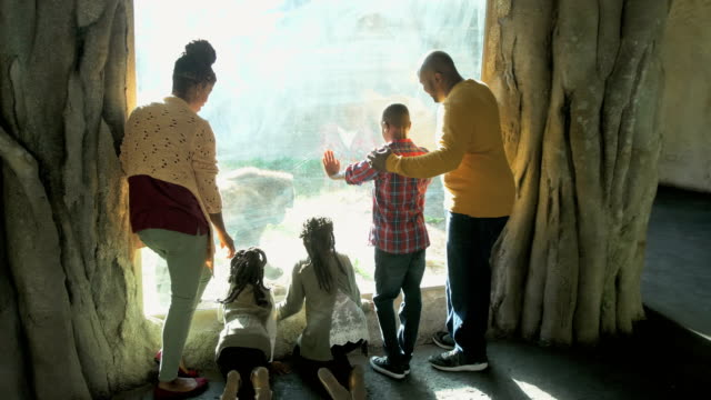 African-American family of five at the zoo, gorilla