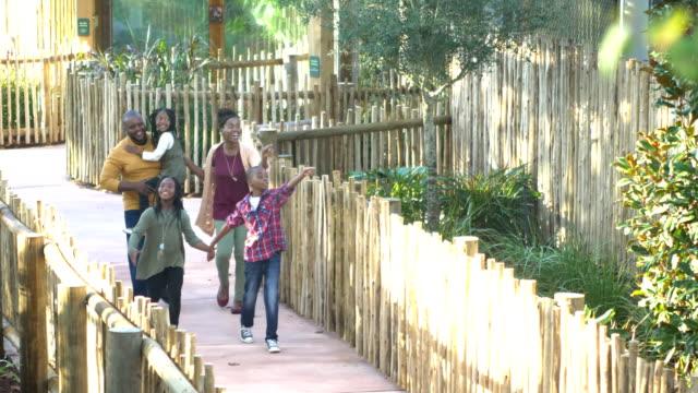 vidéos et rushes de famille afro-américaine de cinq au zoo - zoo