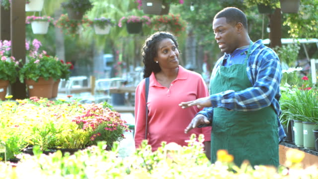 African-American worker in plant nursery helps customer An man working in a plant nursery helping a customer. The woman is pointing to potted flowers, asking questions.  They are both African-American mature adults in their 40s. plant nursery stock videos & royalty-free footage