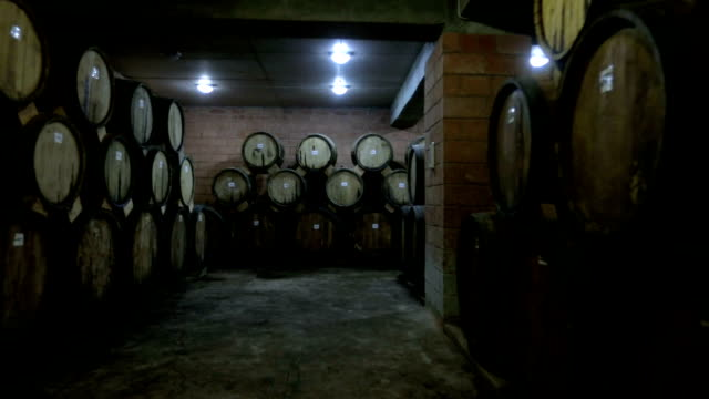 aged wooden barrels with a wine , brandy or whiskey in a big warehouse . dolly , ronin movement a long row of wine barrels at a vintage winery with alcohol . - barile video stock e b–roll
