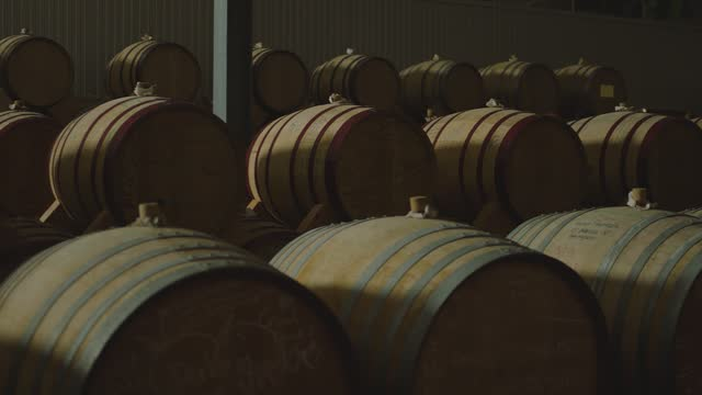 Aged wooden barrels with a wine , brandy or whiskey in a big warehouse . Dolly , gimbal movement a long row of wine barrels at a vintage winery with alcohol . Wine preparation and fermenting process