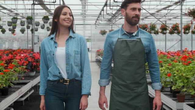 Agricultural Engineer Walks Through Industrial Greenhouse with Professional Farmer. They Examine State of Plants and Analyze Growing Potential.