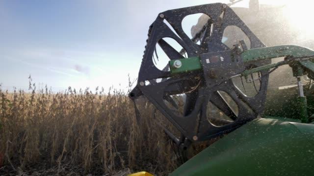 vídeos y material grabado en eventos de stock de equipo agrícola en polvo, cosecha de soja en el campo cerca a estación del otoño - cosechar