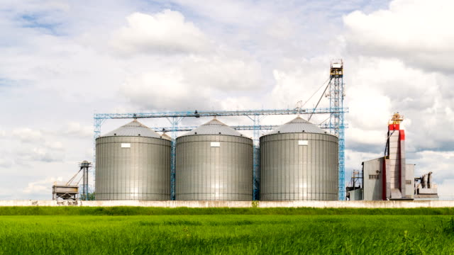 Agricultural Silo, foreground sunflower plantations - Building Exterior, Storage and drying of grains, wheat, corn, soy, sunflower against the blue sky with white clouds video
