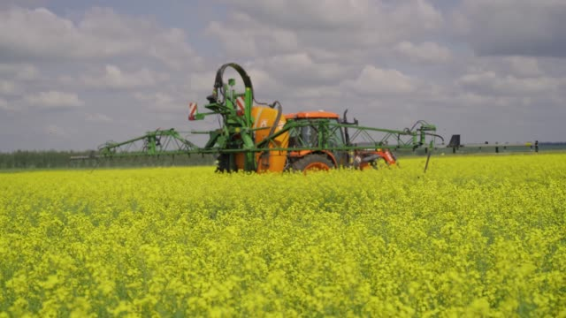 agricultural sprayer detail. flowering rapeseed field. working spraying machine in yellow canola land. spring landscape. chemical fertilizers, toxic pesticides, insecticides. ecology - canola video stock e b–roll