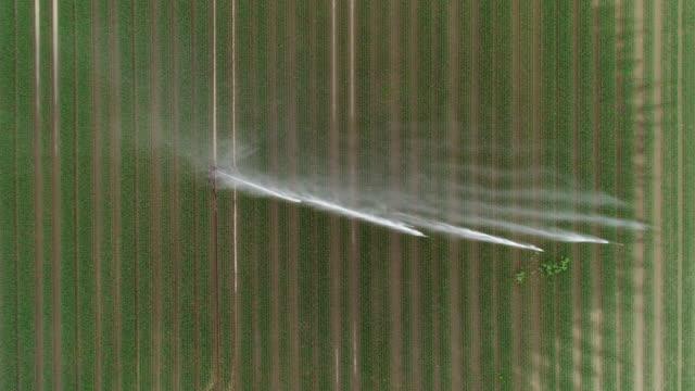 landwirtschaftlichen regner - bewässerung bereich - bewässerungsanlage stock-videos und b-roll-filmmaterial