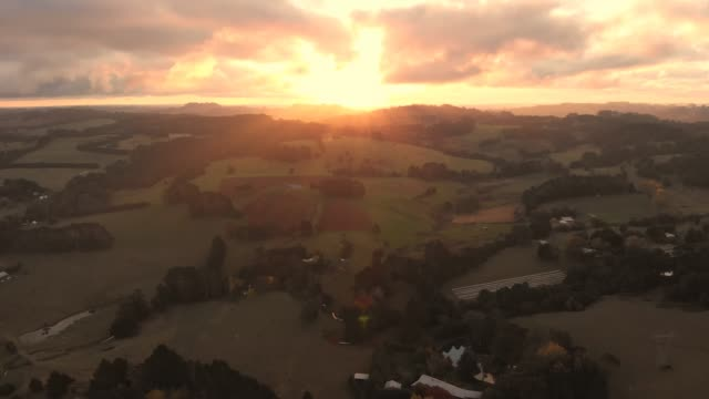 Agriculture Australia aerial livestock grazing rural farmland video