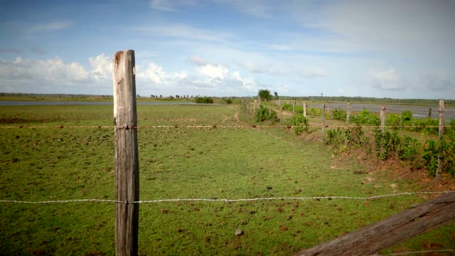 Agriculture barb wire fence. A barbed wire fence and old wooden post line gravel back road Agriculture barb wire fence. A barbed wire fence and old wooden post line gravel back road barns stock videos & royalty-free footage