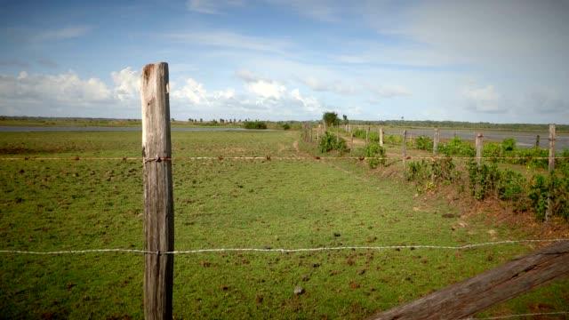 vidéos et rushes de clôture de fil de barbe à barbe d'agriculture. une barrière barbelée de fil et la vieille ligne en bois de ligne de gravier de route arrière - grange