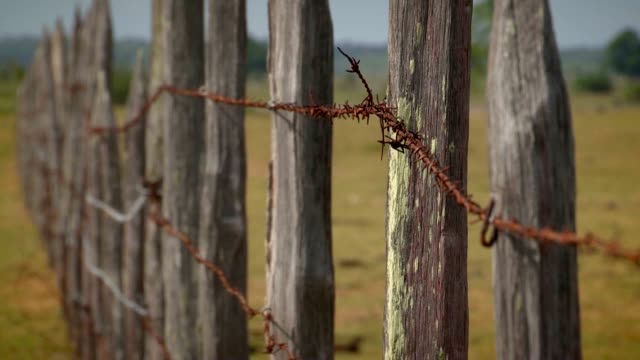 Agriculture barb wire fence. A barbed wire fence and old wooden post line gravel back road video