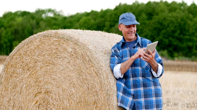 Agriculture, Farmer using digital tablet on field during harvesting
