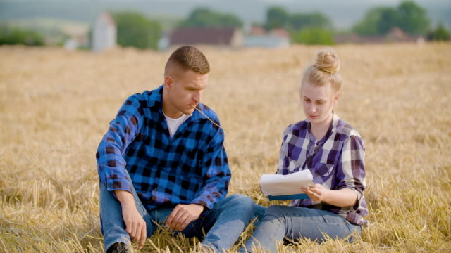 Agriculture - female and male farmers talking at wheat field during harvesting